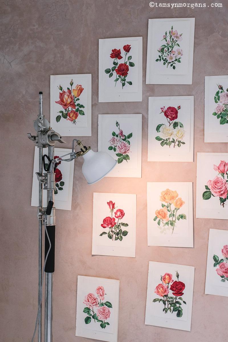 My new photographic studio