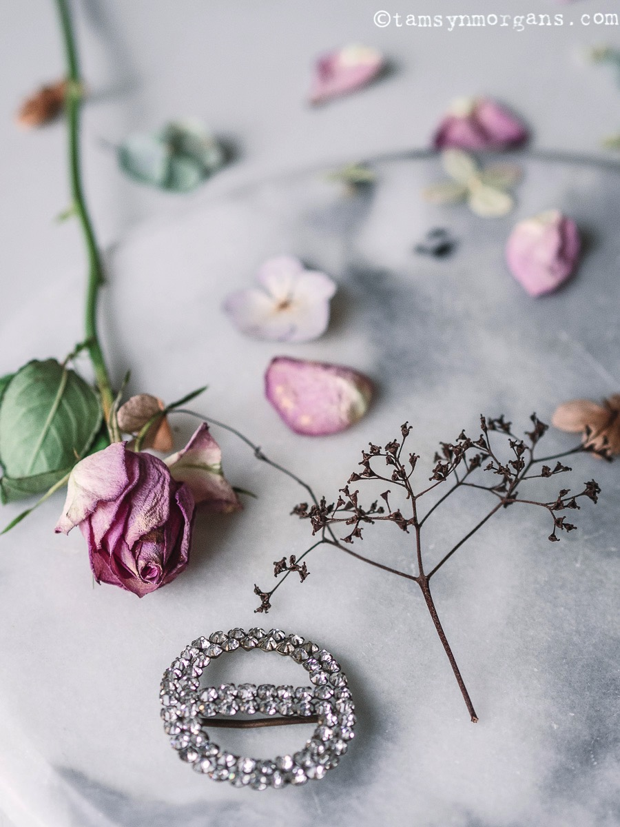 Fading rose and vintage brooch