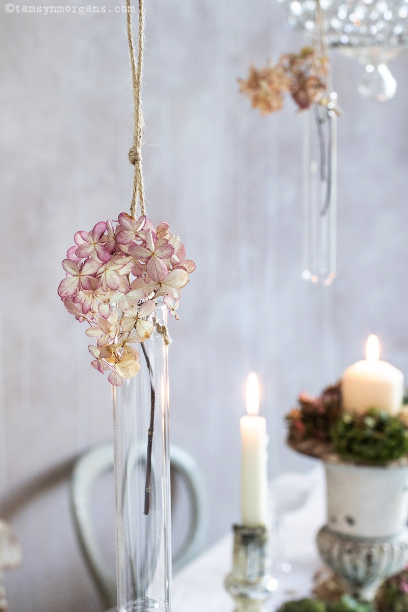 Hydrangea in hanging vase