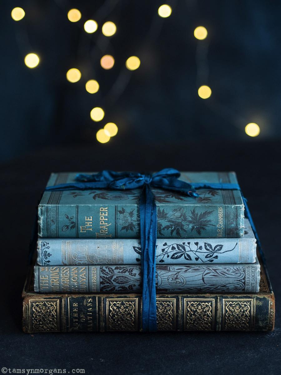 Bundle of vintage blue books