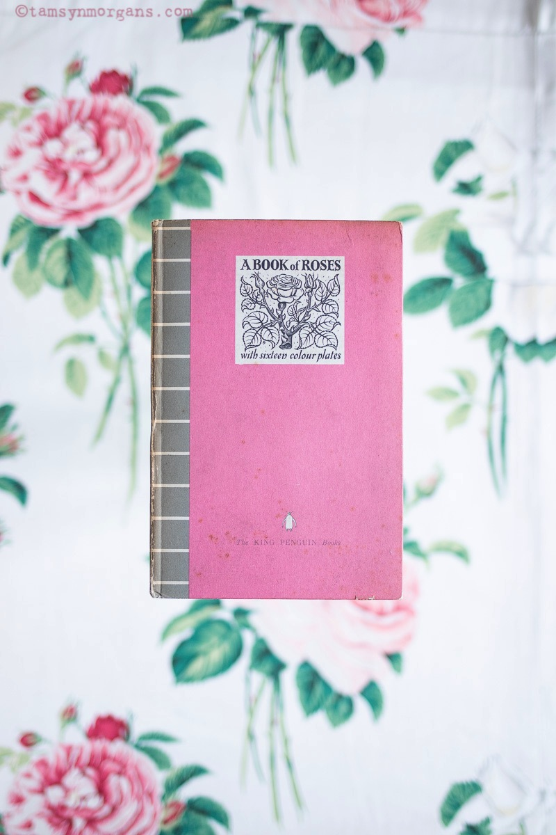 Pink book of roses