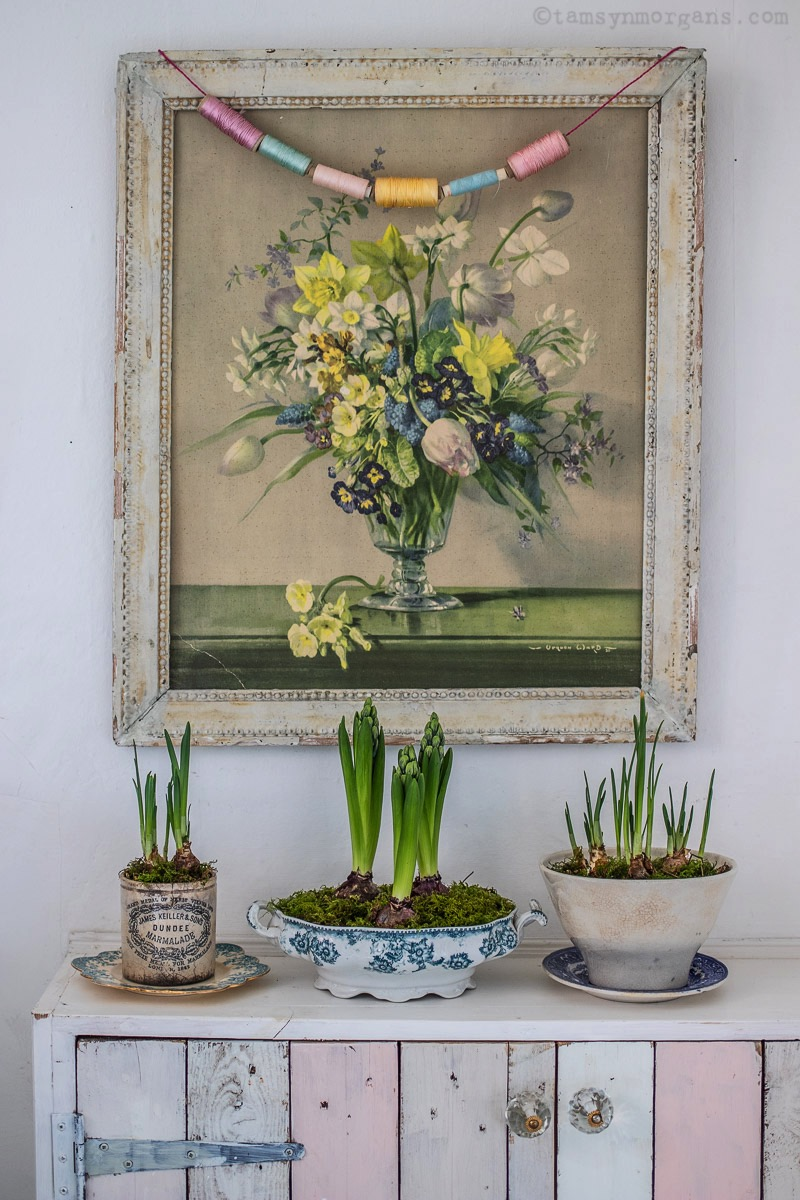 Spring bulbs in vintage vessels