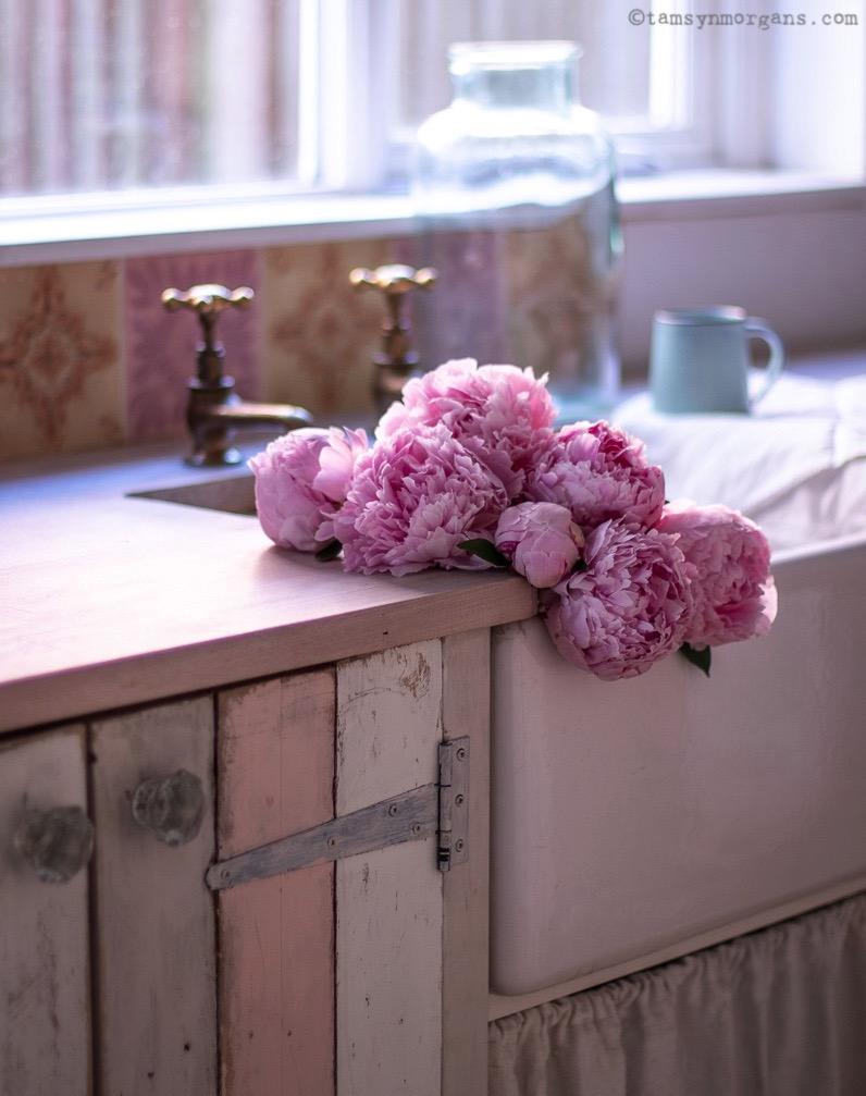 Sink Full Of Peonies