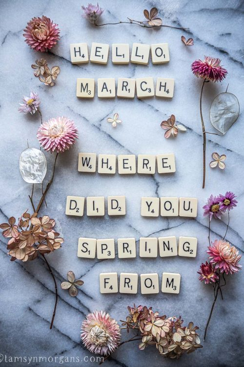 Scrabble letter and petals saying Hello March