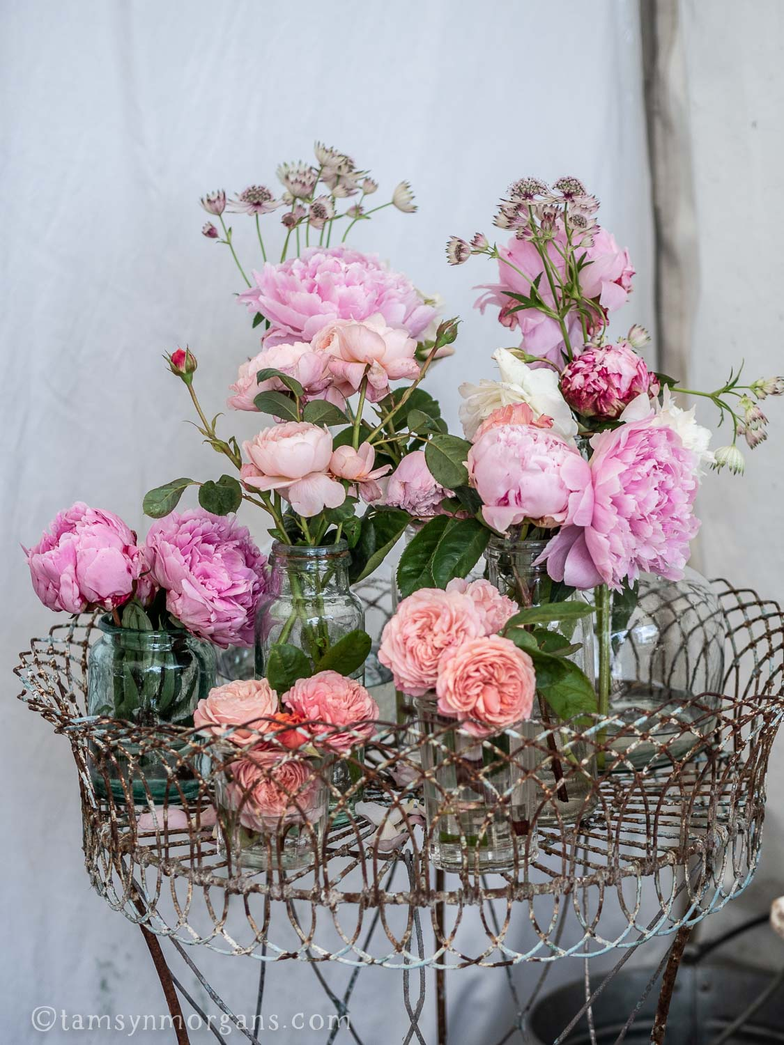 David Austen roses at the Country Brocante