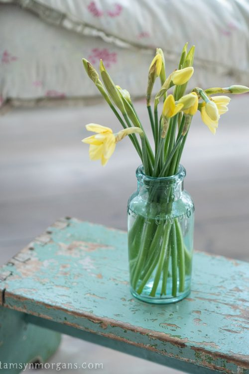 Daffodils in green glass vase