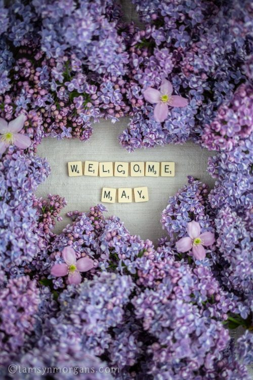 Lilac flowers and Scrabble letters.